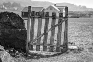 Деревня. Ворота