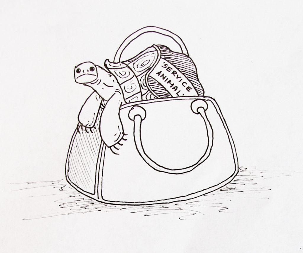 сумка с черепахой
