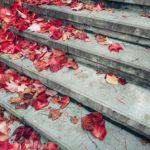 Лестница осенью. Листья
