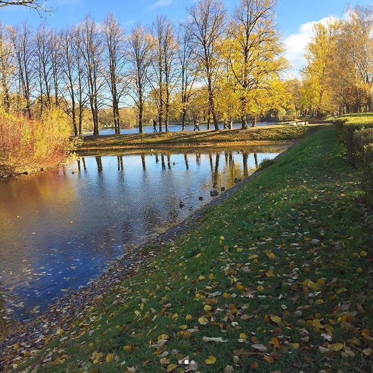 На прогулке в парке