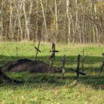 кладбища есть у всех